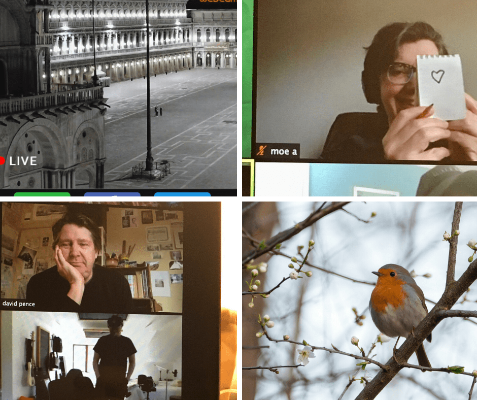 An image divided into four screens with users at computers, a city square and a bird on a branch